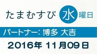 赤江珠緒 たまむすび 2016年11月09日 【博多大吉】 hdki bcvgf.