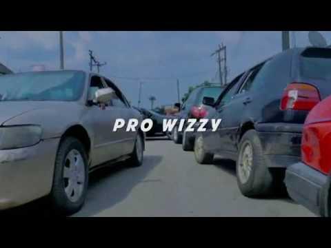 Prowizzy botwana