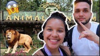 MY 21ST BDAY VLOG  | UP CLOSE WITH A GORILLA / ANIMAL KINGDOM
