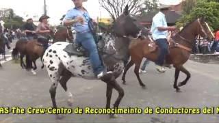 Cabalgata Ferias Santander de Quilichao 2016