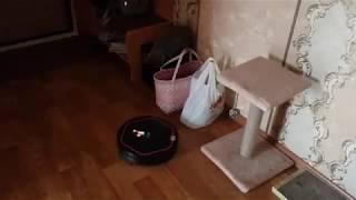 Говорящий робот пылесос Володя (iclebo arte), Кот его достал. Подписывайтесь. 1 сезон 5 серия
