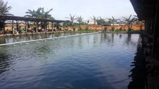 Pemancingan Empang Sodara (kolam galatama ikan bawal) by Yudi Wijaya