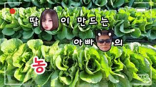 #전북농협 로컬푸드 브이로그 챌린지# 농부로그 최우수상…