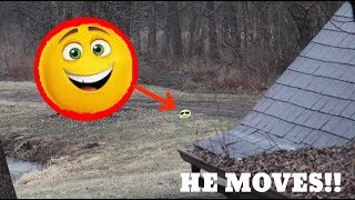 GENE THE EMOJI PILLOW MOVES ON CAMERA!! *It Disappeared*
