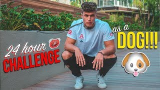 24 HOUR CHALLENGE AS A DOG *EXPERIMENT*