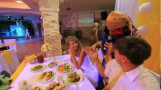 Оригинальные ведущие на свадьбу в Москве