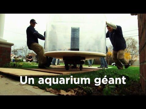 Un aquarium géant : Aquamen