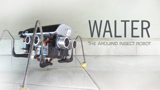 WALTER - The Arduino Insect Robot (light chasing simple quadruped)