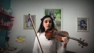Titanium Cover Violin - Sia feat David Guetta