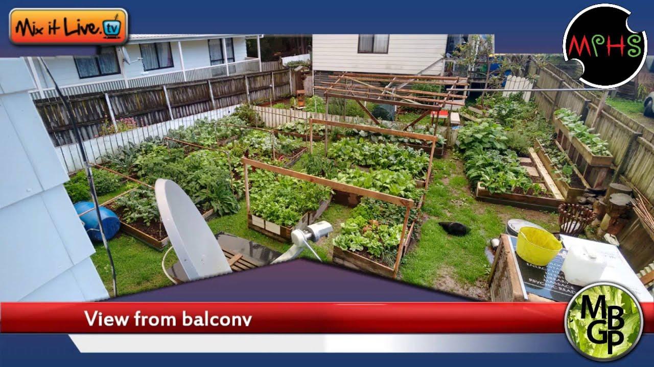 my backyard garden project take 2 short youtube