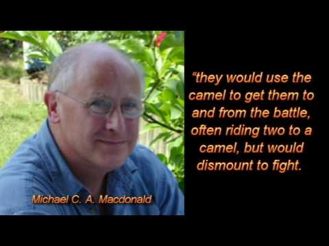 The 9th century domesticated camel theory