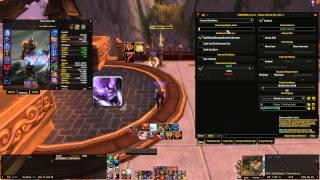 5.4.2 Tellmewhen Tutorial - Warrior pov