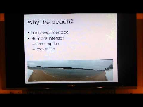 Research at the Reserve: Antibiotic Resistant Bacteria at the Beach