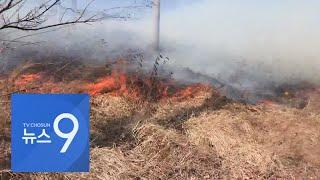 영동 2월 강수량 0.1㎜…건조한 날씨에 산불 '초긴장' [뉴스 9]