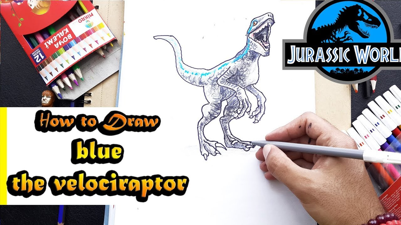 How To Draw Blue The Velociraptor From Jurassic World Youtube
