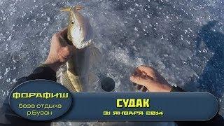 """база отдыха """"ФораФиш"""". Рыбалка в дельте Волги. Январский Судак!."""