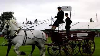 Brewers Drays Royal County of Berkshire Show Newbury 2013