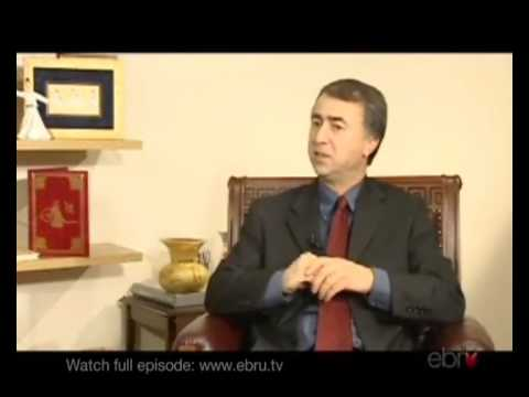 Sufism, Philosophy and Rumi: Interview with Dr. Mehdi Aminrazavi