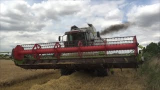 First Bit of Combining, Harvest 2016 Barley