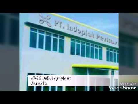 PT. Indoplat perkasa purnama-plant jakarta (divisi delivery)