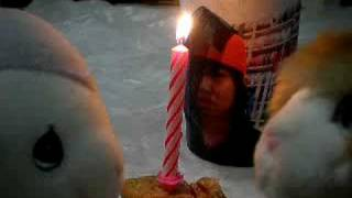 Happy Birthday Shanny Babe!