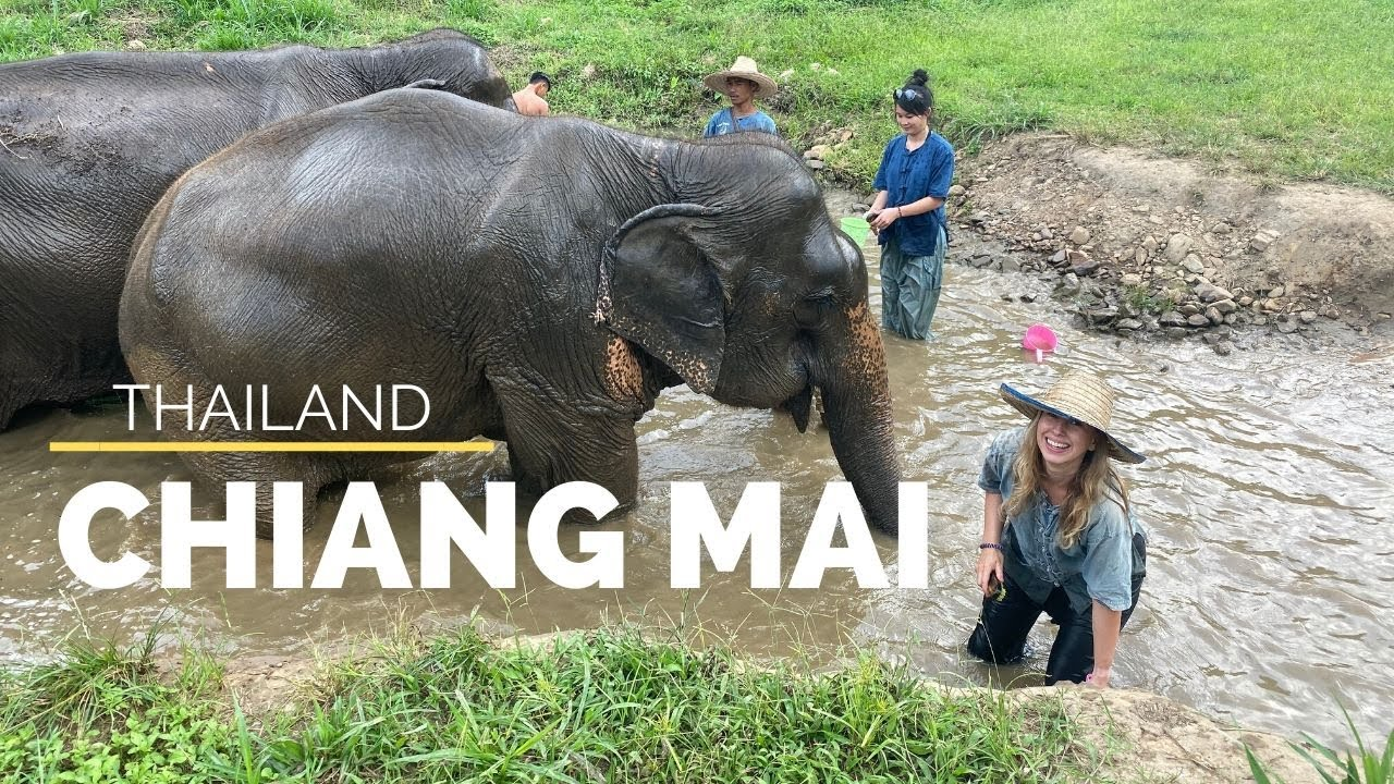 Thailand - What to do in CHIANG MAI    Magda T