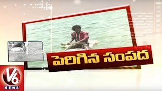 kcr on fish farming