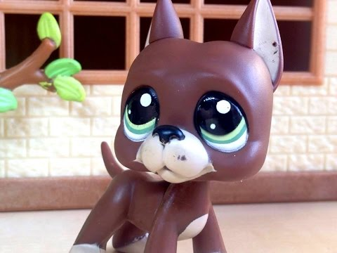 Littlest Pet Shop: