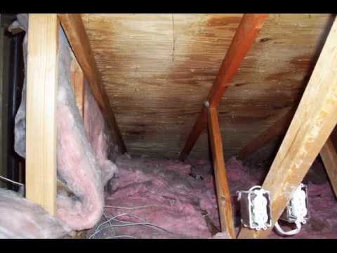 Attic mold removal killed removed treated prevented youtube attic mold removal killed removed treated prevented solutioingenieria Images