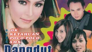 Cover images Lilis - Kucing Garong (Official Audio HD)