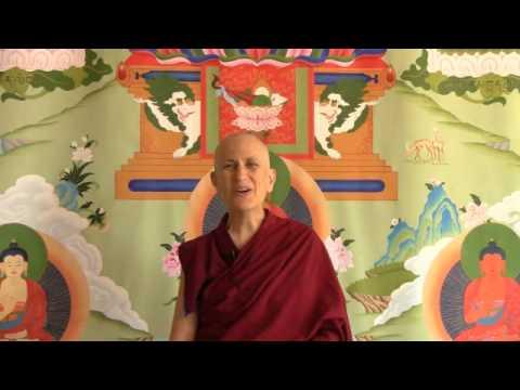 Mindfulness and introspective awareness