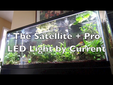 Satellite + Pro LED: Unboxing and Setup