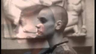 Sinead O 39 Connor The Lion And The Cobra short film.mp3