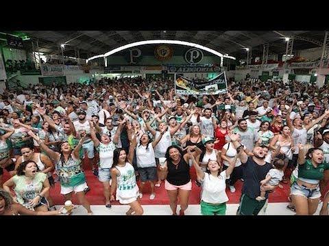 Veja a festa direto da Mancha Verde; campeã do Carnaval de São Paulo
