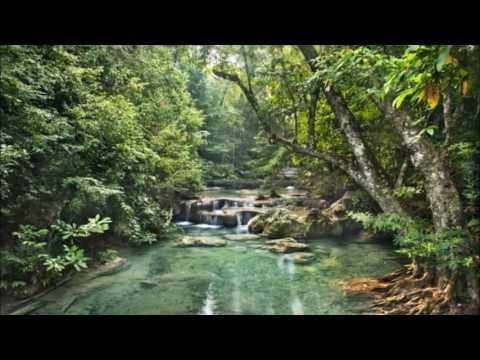 Deep's Tribute To Photek Oldschool Jungle Mix
