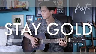 Baixar Stay Gold - BTS (방탄소년단) - Cover (fingerstyle acoustic guitar)