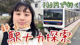 2020年1月 (前編) 山手線、京葉線、内房線 運賃計算の特例を利用し、久しぶりに大回り乗車をしました。 恵比寿駅から渋谷駅の一区間、140円の切...