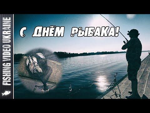 ФИДЕРНАЯ РЫБАЛКА В ДЕНЬ РЫБАКА 2020 | FishingVideoUkraine