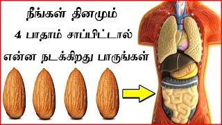 தினம் பாதாம் சாப்பிடுவதால் நிகழும் அதிசயங்கள் | Top Health Benefits of Almonds (Badam) thumbnail