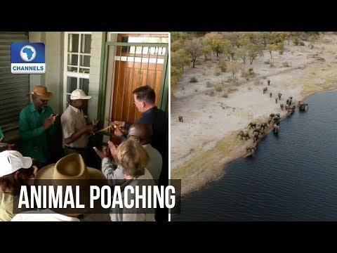 Namibian-German Partnership Provide Remedy To Rural Unemployment, Poaching