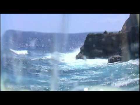 "ACE San Andrés y Sauces 2020 ""paisaje de sensaciones"""