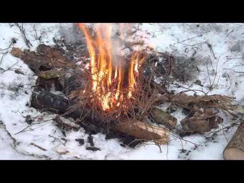 Как приготовить шашлык зимой в лесу