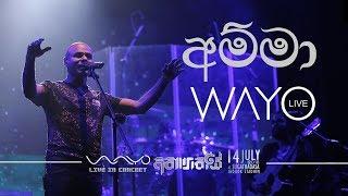 WAYO LIVE - Amma ()