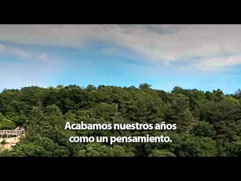 Salmo 90 De La Biblia En Español