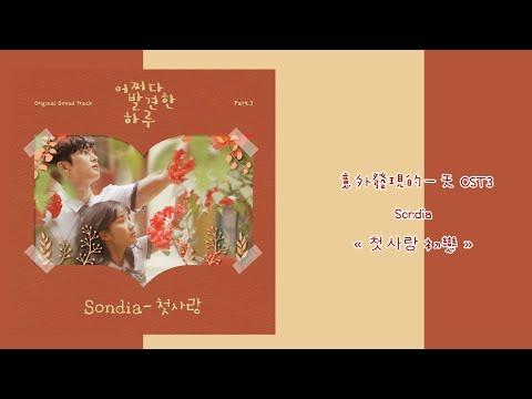 韓中字🎊意外發現的一天 OST3 SONDIA - « 첫사랑 初戀 »