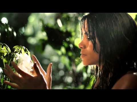 Halle Berry Fragrances - Halle Berry Wild Essence