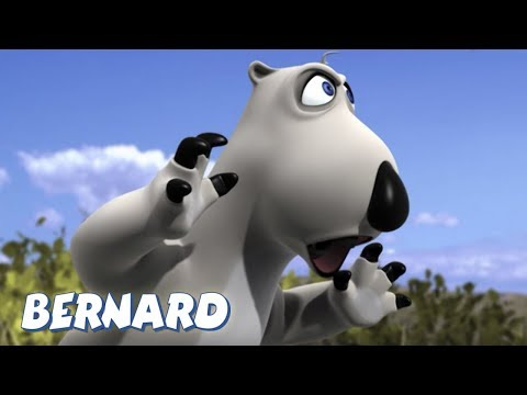Bernard Bear   The Swing AND MORE   45 min Compilation   Cartoons for Children