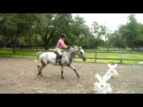 Jumping Jolly Jumper JJ Part 5