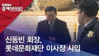 신동빈 회장, 롯데문화재단 이사장 사임