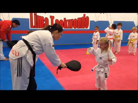 Toddler TaeKwonDO Martial Arts Class at Lima Academy Culver City CA